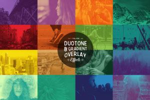 duotone first image design habitat